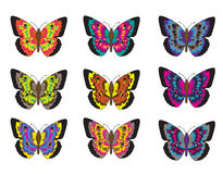 Set of multicolored butterflies on a white background, a collection of butterflies. Vector illustration. Royalty Free Stock Images