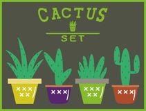 Set of multicolored cactus in pots.  Icons Royalty Free Stock Photography