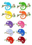 Set of multicolored chameleons on branches. Vector illustration. Stock Photos
