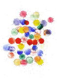 Set of multicolored vector watercolor splashes Royalty Free Stock Image