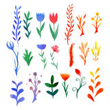 Set of multicolored watercolor flowers Stock Photo