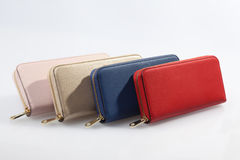 Set of multicolored women`s wallets. Four multicolored female purses lined up in a row on a white background Stock Photography