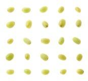 Set of multiple single white grapes Royalty Free Stock Photos