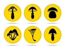 Set mushroom icon. Set  mushroom  icons  on a white background Stock Photo