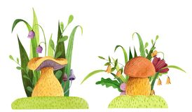 Set of mushrooms with grass, flowers, butterfly, leaves.