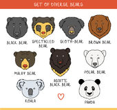 Set 9 muzzles bears handmade in linear style. Bear faces Stock Photography