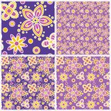 Set nahtlose Blumenmuster Stockfoto