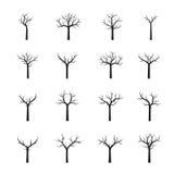 Set naked black Trees. Vector Illustration. Collection of naked black Trees. Vector Illustration Royalty Free Stock Images