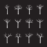 Set naked white Trees. Vector Illustration. Collection naked white Trees. Vector Illustration Stock Photo