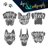 Set names of dog breeds in calligraphy handmade design Stock Photo