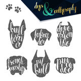 Set names of dog breeds in calligraphy handmade design Royalty Free Stock Photography