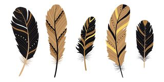 Set of Native American ethnic feathers isolated on white background. Stylized bird feathers isolated on white background. Ethnic decorative elements royalty free illustration