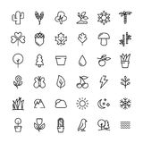 Set natur ikony w nowożytnym cienkim kreskowym stylu Obrazy Royalty Free