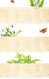 Set natura sztandary Obrazy Stock