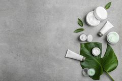 Set of natural cosmetics. On grey background Royalty Free Stock Images