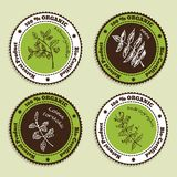 Set of Natural Organic Product badges Stock Photo