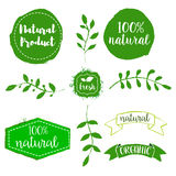 Set of natural product labels. Hand drawn design elements for la Royalty Free Stock Photos