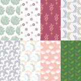 Set of natural seamless background. Illustration of set of natural seamless background Stock Photos