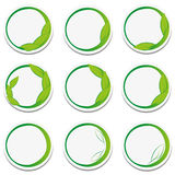 Set natural stickers with leaf. Stock Images