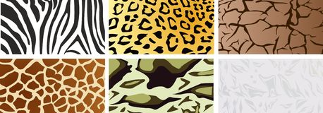 A set of natural textures. Image vector illustration