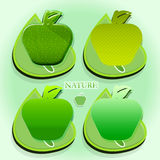 Set nature with apples. Geometric composition with apples and leaves Royalty Free Stock Photo