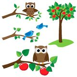 Set of nature elements. Set of summer nature elements: branches with sitting owls and birds and apple tree Royalty Free Stock Images