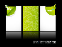 Set of nature gift cards with reflection. Royalty Free Stock Photo