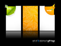 Set of nature gift cards with reflection. Stock Photography
