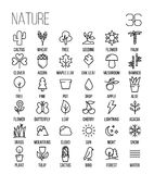 Set of nature icons in modern thin line style. High quality black outline leaves and trees symbols for web site design and mobile apps. Simple linear nature Stock Images