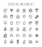 Set of nature icons in modern thin line style. High quality black outline leaves and trees symbols for web site design and mobile apps. Simple linear nature Royalty Free Stock Photo