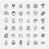 Set of nature icons in modern thin line style. High quality black outline leaves and trees symbols for web site design and mobile apps. Simple linear nature Royalty Free Stock Image