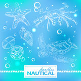 Set of nautical doodles with turtlesand crab Royalty Free Stock Photos