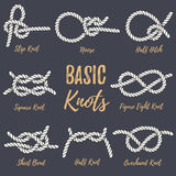 Set of nautical rope knots. Stock Photography