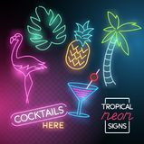 Tropical Neon Light Signs stock illustration