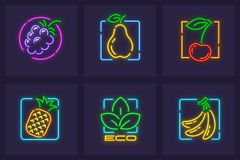 Set of neon icons fruits and berries. Set of neon icons of fruits and berries. Pear, cherry, tropical pineapple and banana, ecologically clean organic food for vector illustration