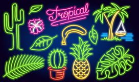 Set of neon signs and icons. Cactus and pineapple, tropical plants, palm trees and leaves. Night bright signboard stock illustration