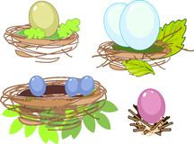Set of nest Stock Images