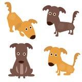Set nette Hunde Stockfotos