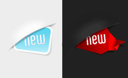 Set of new labels on light and dark background. Stock Images