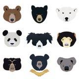 Set niedźwiedź i dzikie zwierzęta wektor i ikona Zdjęcia Stock