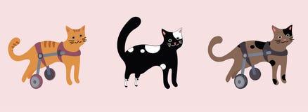 Set niepełnosprawni koty w wózku inwalidzkim Ilustracja Wektor