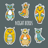A set of night birds Royalty Free Stock Photography