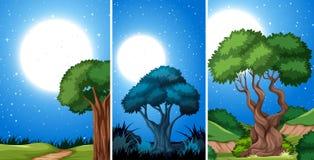 Set of night park scenes. Illustration royalty free illustration