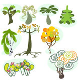 Set of nine different trees Royalty Free Stock Photo