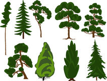 Set of nine green trees on white Stock Images