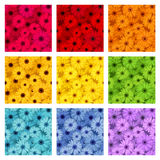 Set of nine seamless patterns with gerbera flowers Stock Photography