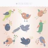Set of nine spring cute birds Royalty Free Stock Photo