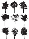 Set of nine trees vector silhouette Royalty Free Stock Photography