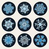 Set of Nine Vector Line Art Stroke Offset Geometric Blue Snowflake Shape Design Elements Stock Images