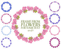 Set of nine wreaths of flowers. Border of flowers for text Royalty Free Stock Image